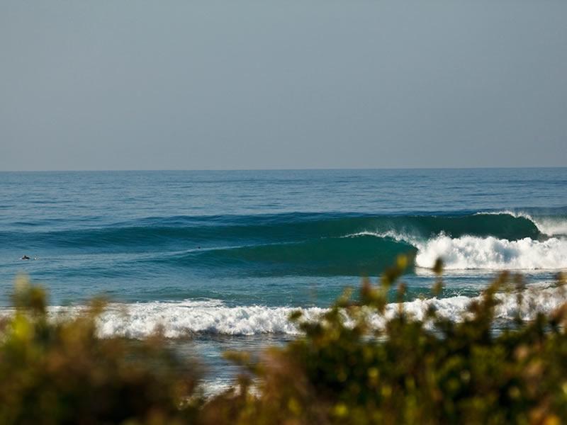 saffa tours surf guiding lesson and surf experiences