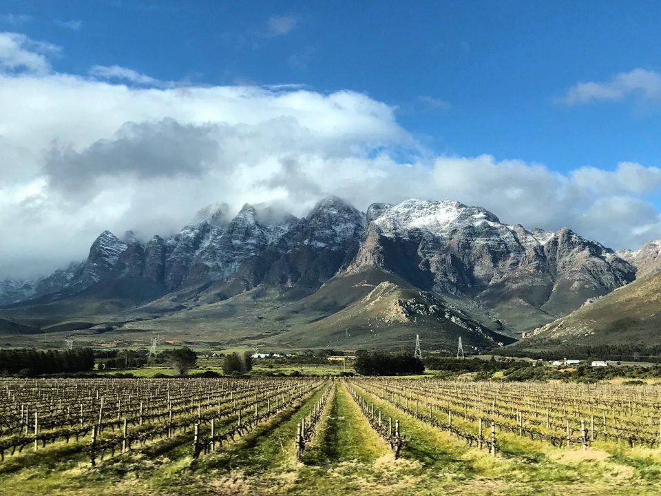 winelands_snow