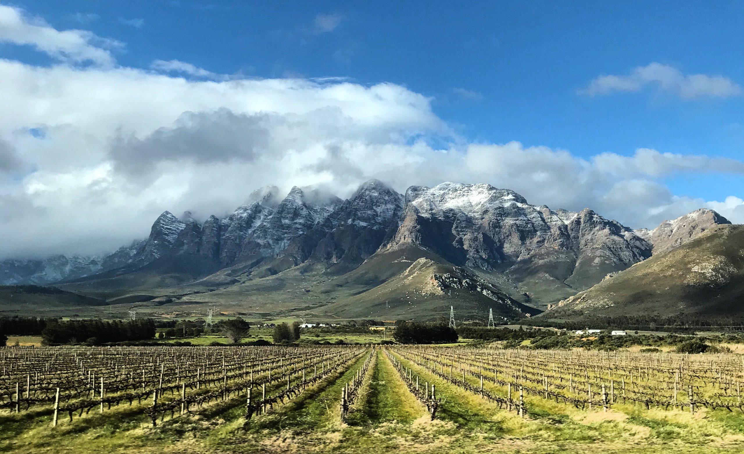 winelands_snow